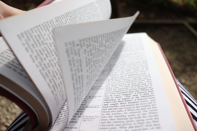 Scriptures for Mistakes